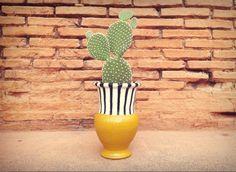 Timida Opuntia! #cactusysuculentas #cactus #cacti #cactuslover #cactilove #suculentas #succulents #succulove #market #malasaña #dosdemayo #dosde #plazadosdemayo #madrid #opuntiamicrodasys