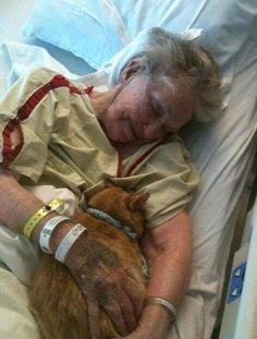 The Hospital allowed this lady's cat to visit her during her last day on earth!