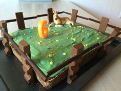 Pferde-Geburtstag 😋