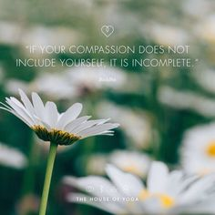 """If your compassion does not include yourself, it is incomplete."" ― Buddha"