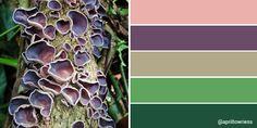 Learn To Crochet, Pattern Design, Mixed Media, Community, Colour, Artist, Nature, Color, Naturaleza