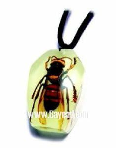 It seems you can put anything in resin http://static.traderscity.com/board/userpix36/25325-real-insect-inside-resin-jewelry-necklace-1.jpg