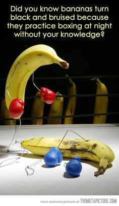 What bananas do at night…