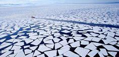 El nivel de los mares subirá más rápido de lo previsto provocado por el deshielo del Antártico - http://www.renovablesverdes.com/nivel-los-mares-subira-mas-rapido-lo-previsto-provocado-deshielo-del-antartico/