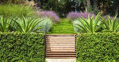 (contrasting grasses) griffin-enright-muhlenbergia-slatted-gate-grasses-gardenista (1)