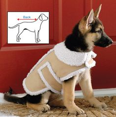 Shearling Fleece Dog Winter Coat: For Petey this winter!