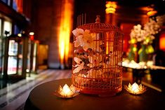 bird cage centerpieces - Google Search