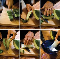 NOURISH | How to Harvest and Cut Aloe Vera  --  make sure to break leaf off near base of plant, and cut all yellow away from gell