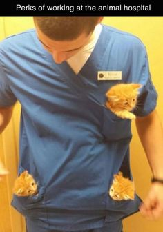 Squeee!!! If working at an animal hospital was like this and non of the hurt animals... it would be my dream job!