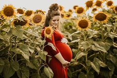 Maternity pictures in sunflower field with red dress | sunflower photoshoot family maternity photos #