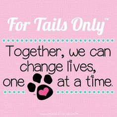Don't you want to make a difference? Change the lives of pets, help rescues, change lives. www.fortailsonly.com/fluffnfur
