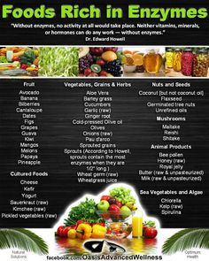 """Hormones, vitamins and minerals cannot do their """"work"""" properly in our body without ENZYMES!  Take a look at this poster and have an idea about foods that are rich in enzymes"""