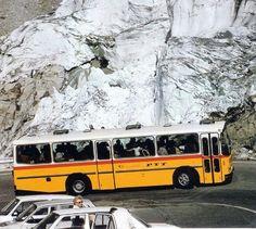 Ulsan, Turin, Post Bus, Chevy, Mercedes Benz, Volkswagen, Michigan, Bmw, Busses