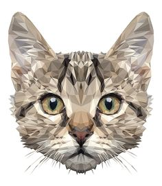 Example for a cat tattoo Art And Illustration, Pop Art, Polygon Art, Cat Design, Design Lab, Design Model, Design Trends, Ouvrages D'art, Animal Faces