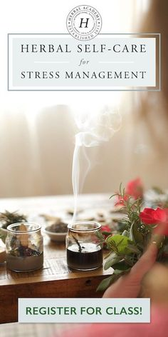 Enroll in the Herbal Self-Care for Stress Management Course Natural Health Remedies, Herbal Remedies, Stress Management Course, Basil Health Benefits, Emotional Resilience, Lotion Recipe, How To Make Homemade, Natural Cleaning Products, Kraut