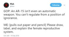 Please draw, label, and explain the female reproductive system. Female Reproductive System, Intersectional Feminism, Pro Choice, Patriarchy, The Victim, Social Justice, Equality, Wisdom, Positivity