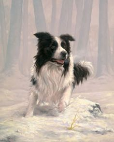 Gotta love Border Collie art and artists