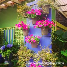 Beautiful old door planter. What a colorful addition to a garden. DIY Container Gardening Idea.