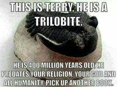 Terry the Trilobite
