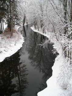 John H. Allison Memorial Forest Ramsey CountyMN 2012 [11971600][OC] #reddit