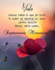 VIATA TA ITI APRTINE!... - Francisc Spiritual Life, Spiritual Quotes, Romantic Couple Hug, Deep Questions, Good Morning Inspirational Quotes, Good Motivation, Motivational Words, True Words, Positive Thoughts