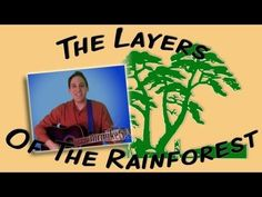 Layers of the Rainforest (Earth Day song for children) Rainforest Song, Rainforest Preschool, Brazil Rainforest, Preschool Jungle, Rainforest Habitat, Rainforest Animals, Amazon Rainforest, Jungle Animals, April Preschool