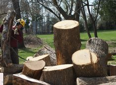 Upanoak Tree Care Inc. provides flexible, reliable and professional urban arboriculture and canopy development services to both residential and commercial properties, Stump Removal in Dunbarton. Stump Removal, Tree Care, View Map, Canopy, Commercial, How To Remove, Urban, Canopies, Porch Awning