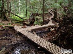 moutain bike trail plan | Mountain Biking at Mount Seymour | Raif Weston