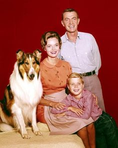 "Lassie (various dogs), June Lockhart (born June as Ruth Martin, Hugh Reilly (October as Paul Martin and Jonathan Bion ""Jon"" Provost (born on March as Timmy Martin. Rough Collie, Collie Dog, Jon Provost, June Lockhart, Comedy Tv, Child Actors, Old Tv Shows, Vintage Tv, Tv Guide"