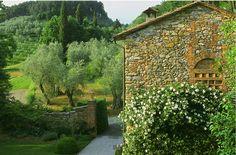 Italian garden textures