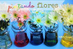 Pintando flores, experimentos con niños
