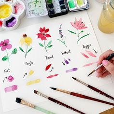 ey ☺️ I keep working on my basic course and here is a little piece of it. Brush strokes practicing with different types of brushes. Watercolor Beginner, Watercolor Paintings For Beginners, Watercolor Tips, Watercolor Projects, Watercolor Brushes, Watercolor Drawing, Floral Watercolor, Painting & Drawing, Brush Strokes Painting