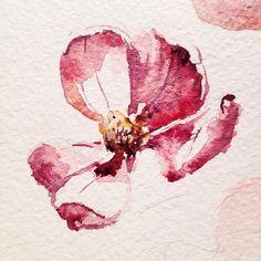 #waterblog #flowers #watercolor #цветы #акварель #набросок #рязань
