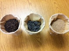 Fun in First Grade!: Natural Resources