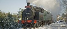 Take a ride on the Santa Special at Spa Valley Railway and meet Santa on board.   New for this year are the Reindeer Specials - climb on board at East Grinstead, see the Reindeer at Kingscote then met Santa at Horsted Keynes.  www.spavalleyrailway.co.uk