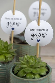 Free Printable Teacher Appreciation Gift Tag, Thanks for Helping Me Grow. Give teachers plants, seeds, herbs, or succulents to show how thankful you are. #teachergifttag #teacherthankyou #teacherappreciation #thanksforhelpingmegrow