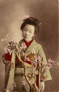 vintage japanese bonsai art - Google Search