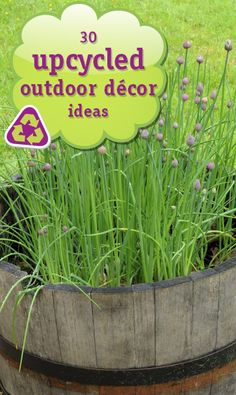 30 Upcycled Outdoor Decor Ideas!  My favorites are the pallet board walkway and dresser planter.