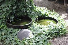 vatten i trädgården - Sök på Google