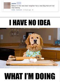 Baking?