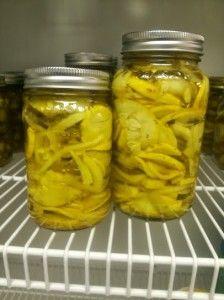 Pickled Squash Recipe