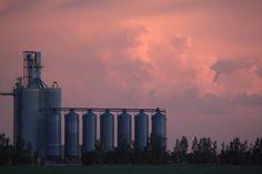 Flour Mill with sunset sky