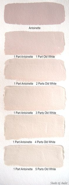 color | shades of antoinette