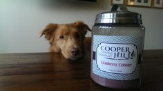 Everyone loves Cooper Hill Candles!  Especially Addison!