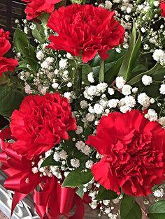 Bouji Red Carnations Arrangement by Bouji Boutique
