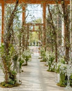 "592 Likes, 11 Comments - Zita Elze (@zita_elze) on Instagram: ""Aisle of dreams... Kew Garden's Nash Conservatory transformed into an enchanted woodland by…"""