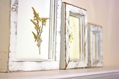 How to frame pressed flowers - beautiful tutorial by Wholly Kao