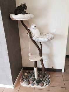 Arbre à chat DIY (pour les radins comme moi) Lit Chat Diy, Homemade Cat Beds, Diy Cat Bed, Cat Towers, Cat Scratcher, Cat Condo, Cat Furniture, Diy Stuffed Animals, Pet Accessories