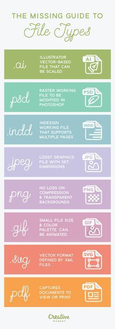 Understanding the pros and cons of using a certain file type for your project is…