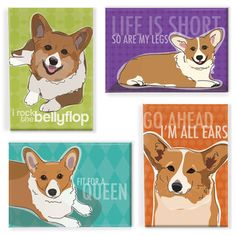 Pop Doggie Corgi Magnet 4Pk now featured on Fab.